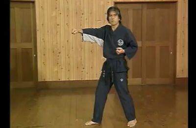 Kime, extériorisation de puissance en Karaté, Aïkido…