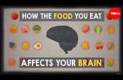 Food and Brain