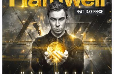 Hardwell Feat. Jake Reese - Mad World (Besklo Remix)