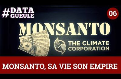 Comprendre Monsanto en 3 minutes (Video)