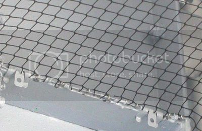 Need a Loading Dock Bird Deterrent? Consider Bird Netting