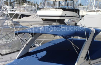 Effective Bird Control for Boats and Marinas