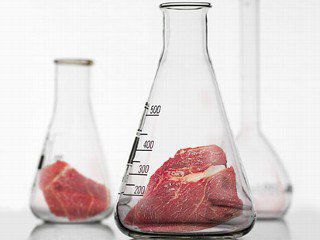 Doctors and Scientists Create New Society to Promote Non-Animal Toxicology Testing Methods