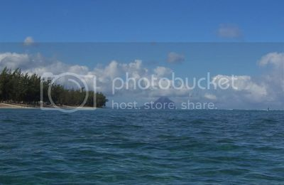 L'Ile au bénitier