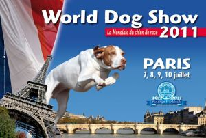 Shiba Inu World Dog Show 2011 France