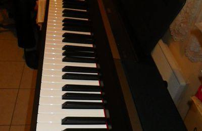 Housse pour piano... by Zhom ...