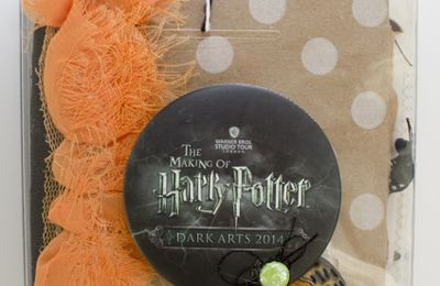 mini album halloween version harry potter par Clara