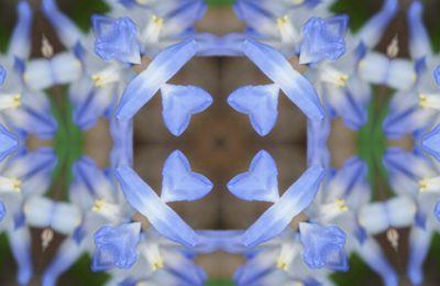 Mandalas et Kaléidoscopes