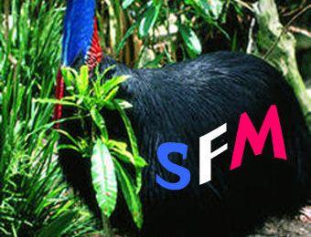 SFM UN SIGLE FORT !