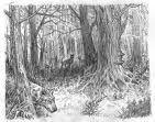 1861 - Une battue aux loups est organisée près de Louviers