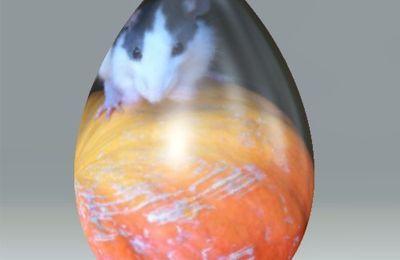 un ŒUFLOWEEN pour HALLOWEEN ... pour votre collection d'oeufs en image