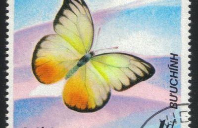 image papillon catopsilia scylla timbre du viet nam