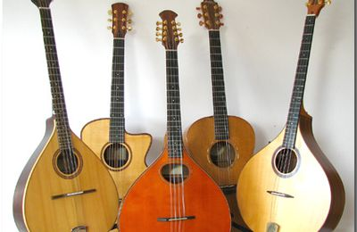 Stage Fingerstyle Guitare et Irish Bouzouki
