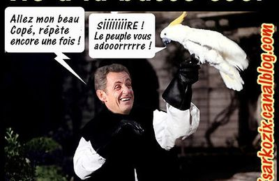 Sarkozy et le syndrome de la chaise percée