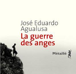 La guerre des anges */ José Eduardo Agualusa