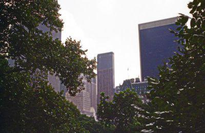 Chroniques de Central Park. V