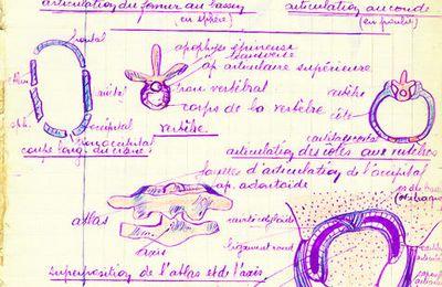 CAHIER DE SCIENCES MILIEU DES ANNÉES 1930