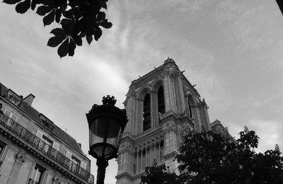 Notre Dame et ses gargouilles