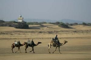 Moroccan style: news from the Kpwt Essaouira