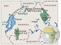 RWANDA and its Mountain GORILLAS