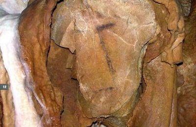 Le visage de la Grotte de Vilhonneur