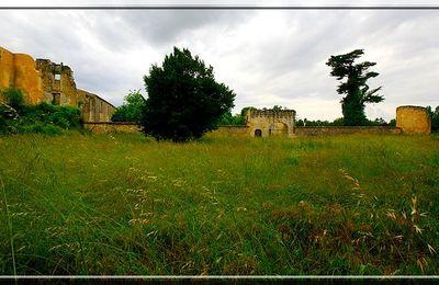 Château proche de MEURSAC