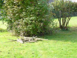 Le jardin s'endort tout doucement...