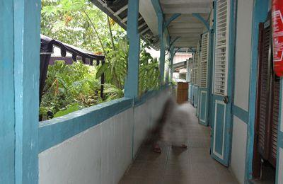 Le Musée des cultures guyanaises......... et les Wayampis !