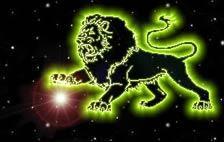 Destin Lion