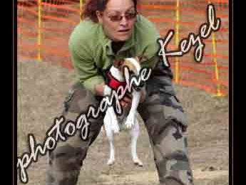 Un excellent week-end! 1- Le flyball...