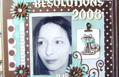 ** MES RESOLUTIONS 2008 **