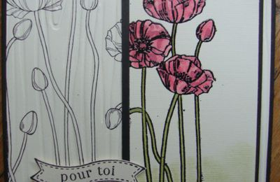 """Tampons """"Pleasant Poppies"""" p75, Catalogue 2013-2014."""