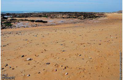Une plage avec du sable