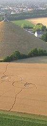 Crop circles: révélations annoncées