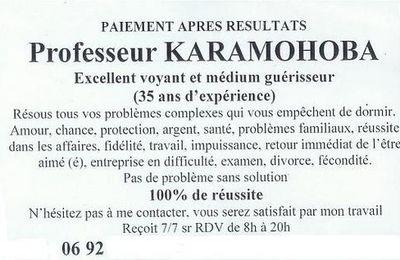 LES BELLES SORNETTES DU PROFESSEUR KARAMOHOBA.