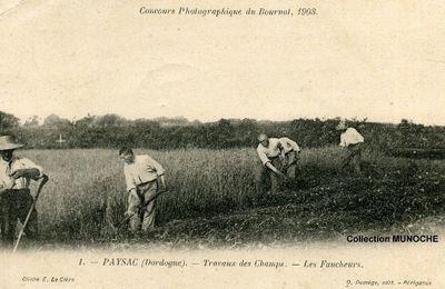 PAYZAC : hommage à la paysannerie. Cartes postales anciennes DORDOGNE PERIGORD .