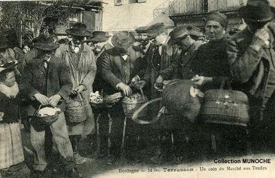 TERRASSON : marché aux truffes. Carte postale ancienne.