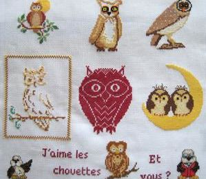 Round Robin : les chouettes