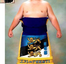 J'ai fini par regarder le sumo...