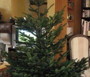 En route vers Noël (4)