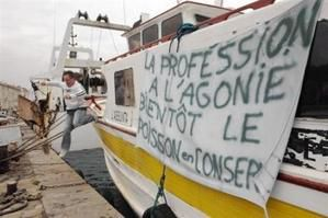 Crise dans la pêche et l'agriculture
