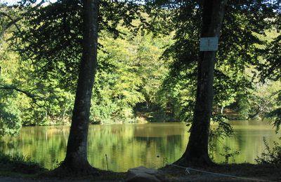 derrière chez moi y a un étang