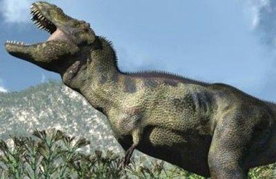 Matériaux organiques préservés sur un fossile de dinosaure