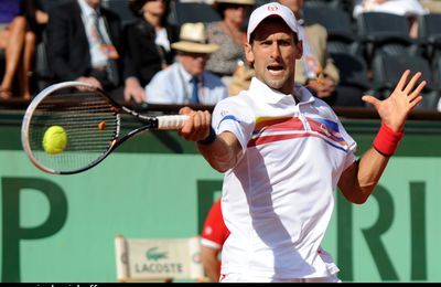 Le punch de Novak n'a pas suffi