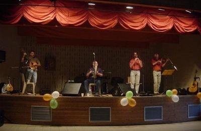 Les wild geese en concert