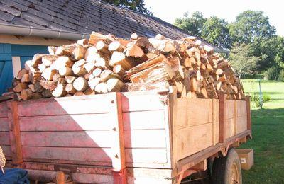 L'hiver sera rude...homme blanc scie beaucoup de bois!!!