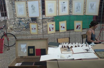 Expo à Saint Hippolyte du Fort, fin.
