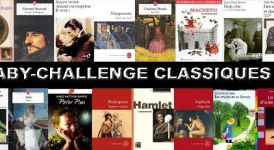 Challenge littéraire 2011