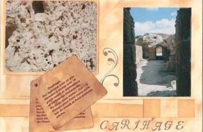 Quelques pages de Carthage