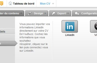 10 raisons d'avoir un CV en ligne sur do you buzz